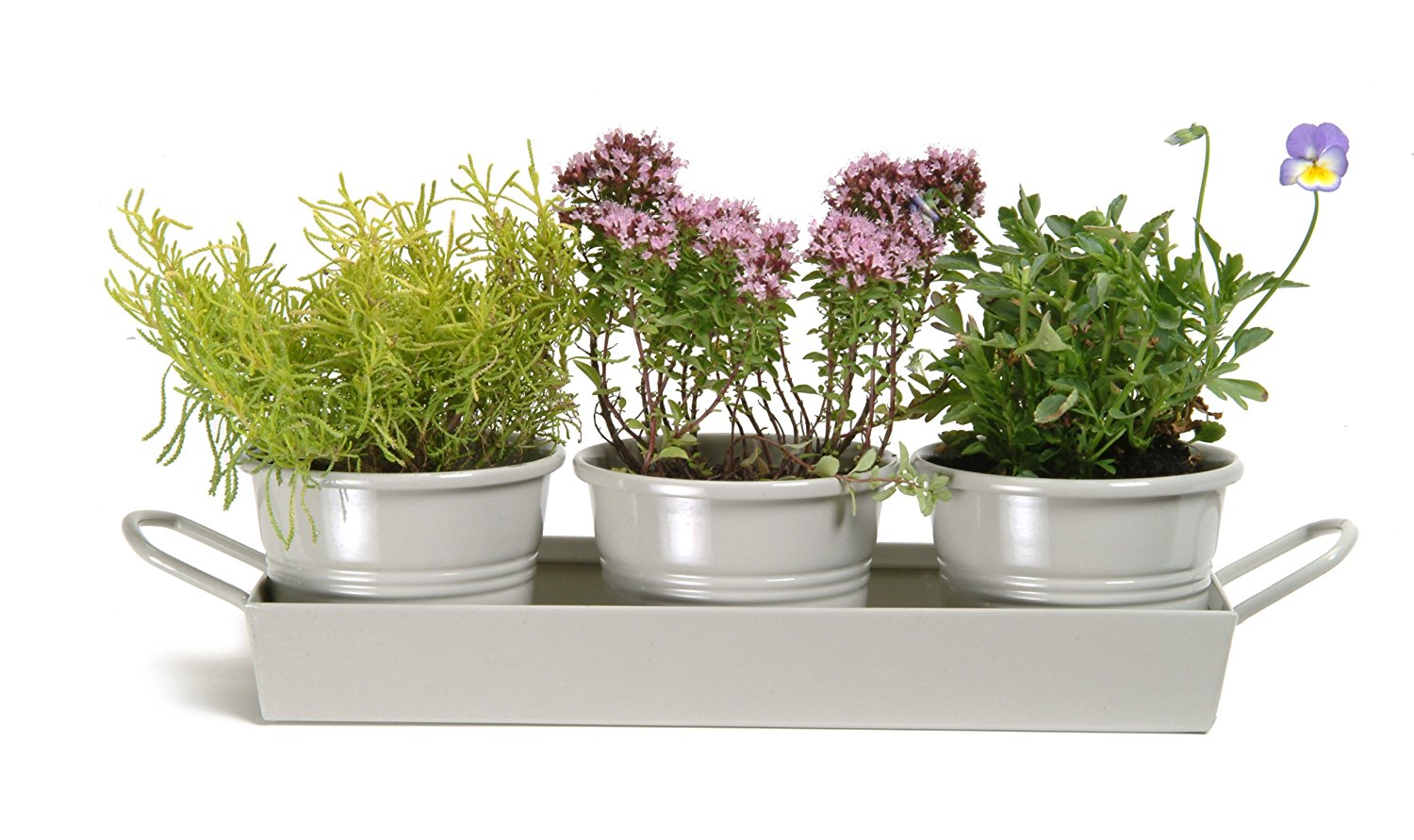 set of 3 trays perfect for the garden