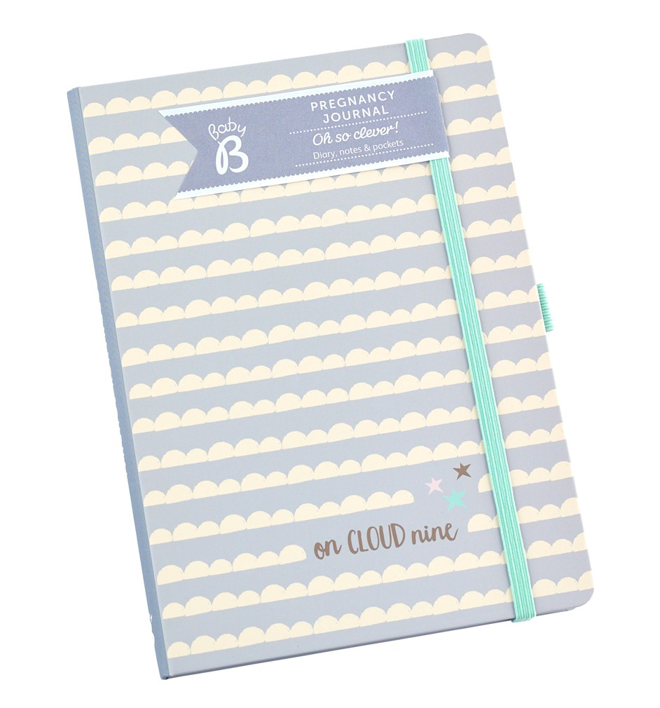 pregnancy journal notebook