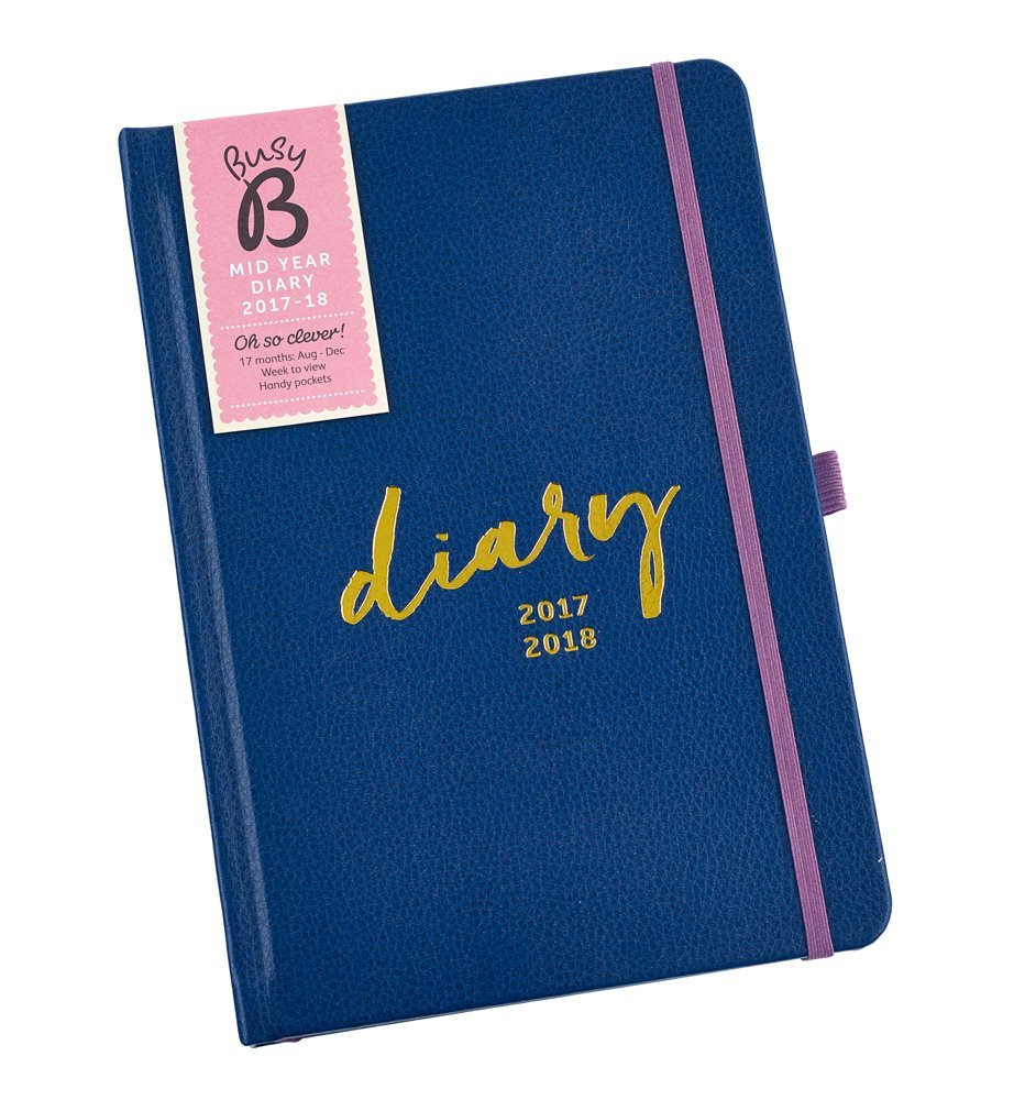busy b diary for the year