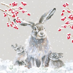 Wrendale Designs Snowfall Boxed Christmas Cards