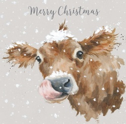 Wrendale Designs First Taste of Snow Boxed Christmas Cards