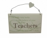 I Got The Best Teacher Sentimental Gift Plaque