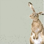 Wrendale Designs The Hare and the Bee 20 Pack Napkin Set