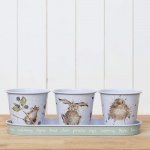 Wrendale Designs Illustrated  Countryside Herb Pots With Tray